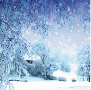 Talven ihmemaa kuva
